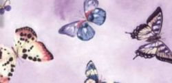 Orthesen Farbmuster Butterfly Pink